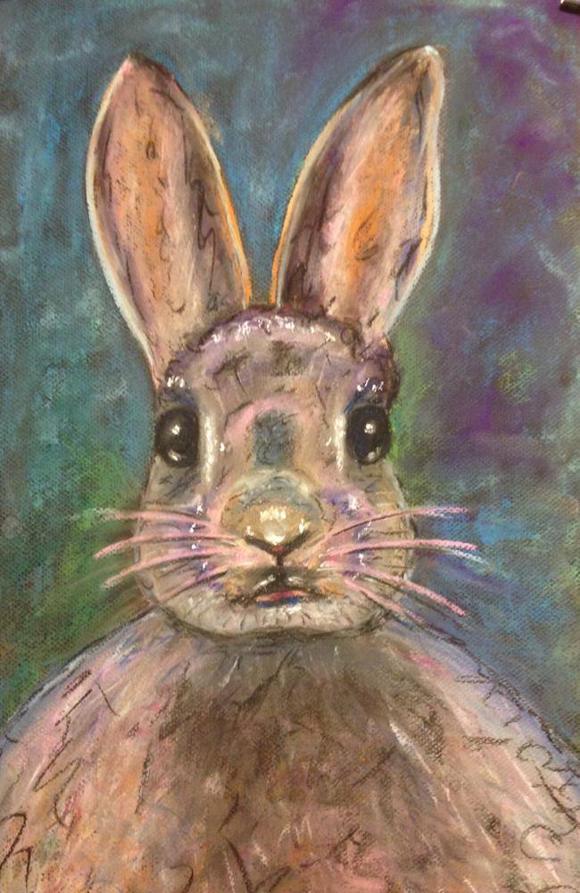 peta-rabbit-web-size