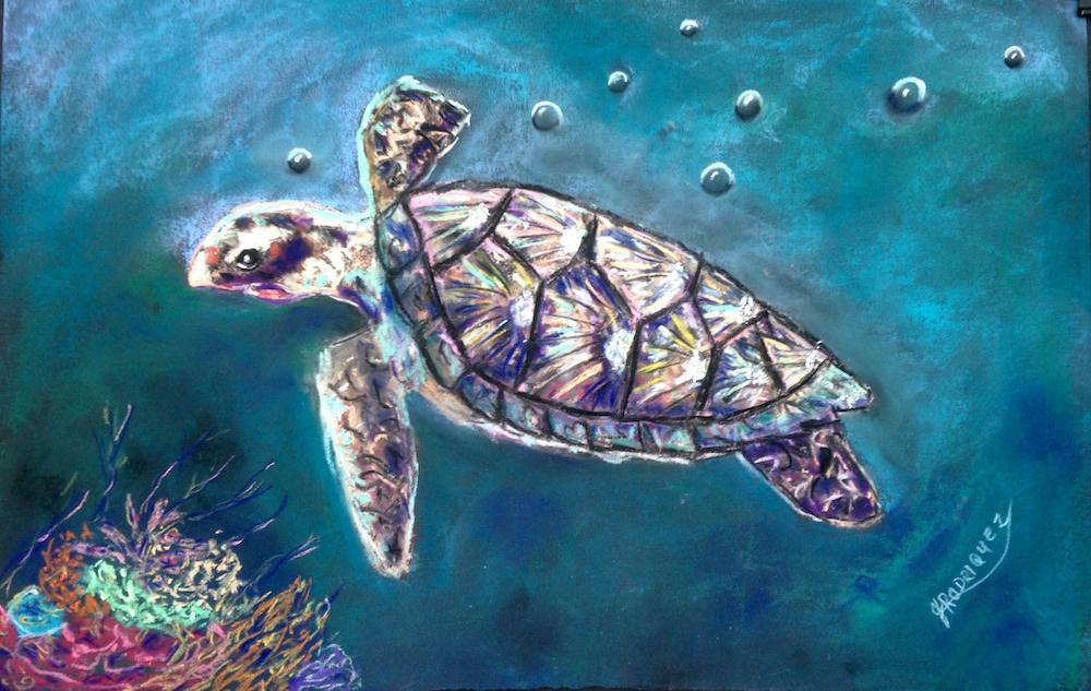 turtle-web-size